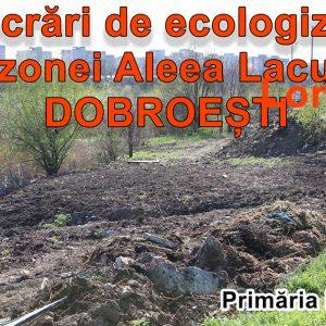 Ecologizare Aleea Lacului – Dobroesti – Aprilie 2020