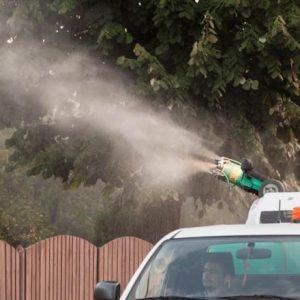 Acțiuni de combatere a insectelor in Dobroesti