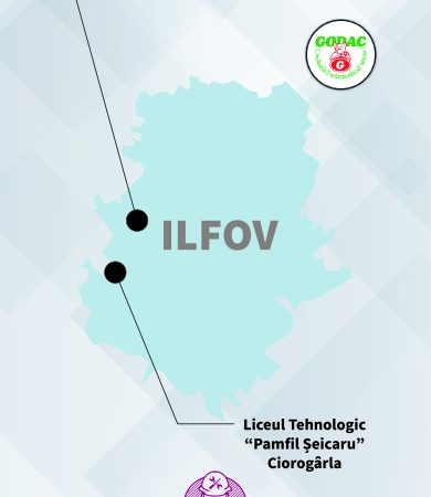 Învățământ dual în ILFOV