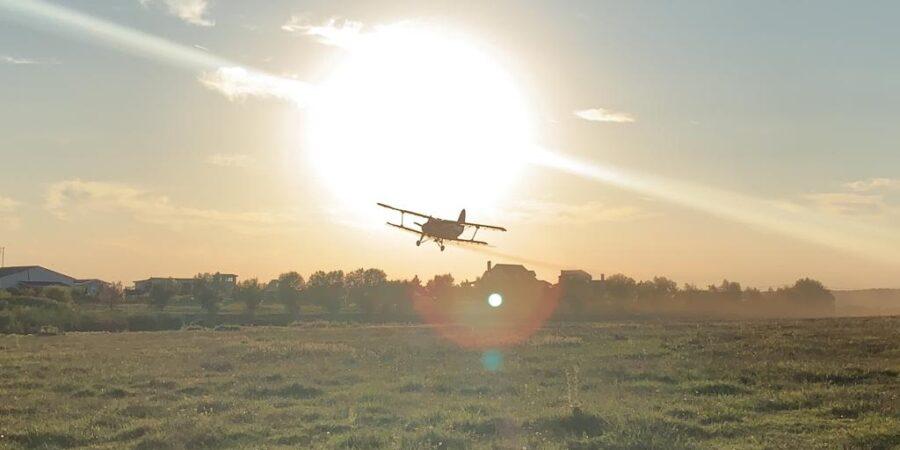 Acțiune avio pentru combaterea larvelor insectelor de disconfort